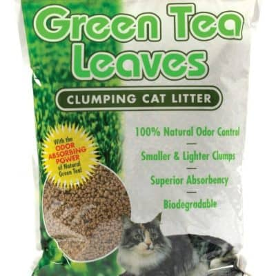 Green Cat Litter Disposal