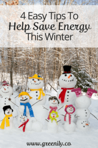 Green, tips, save energy, winter