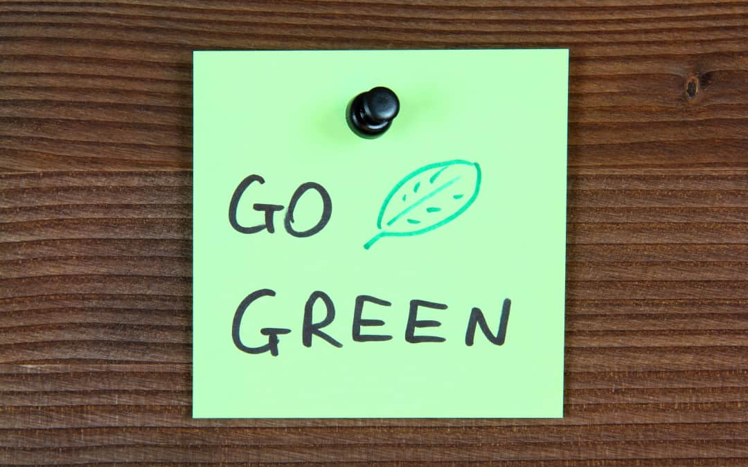 3 Easy Ways to Be Green Now!