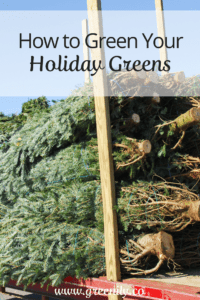 green tips holidays