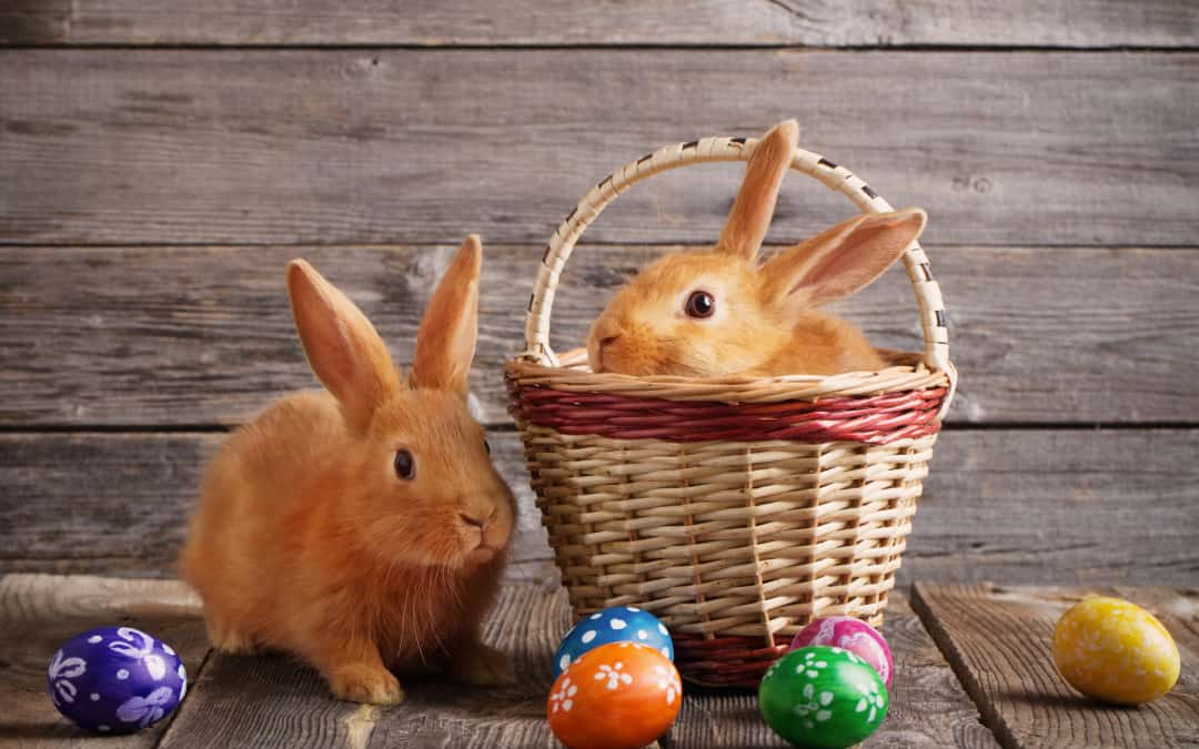 3 Easy Eco-Friendly Easter Basket Swaps