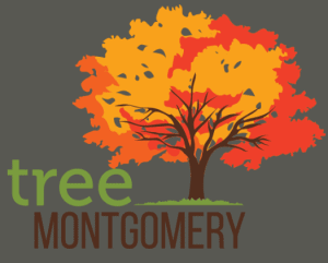 treemontgomery
