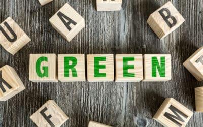 3 Easy Ways to Help Your School Go Green