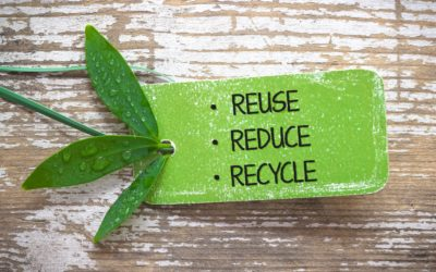 Seriously Easy Ways to Live a Little Greener:  Reduce Waste
