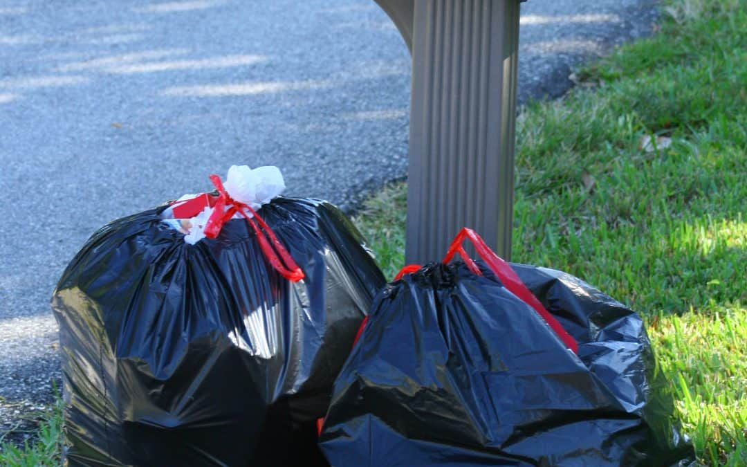 3 Eco-Friendly Trash Bag Options