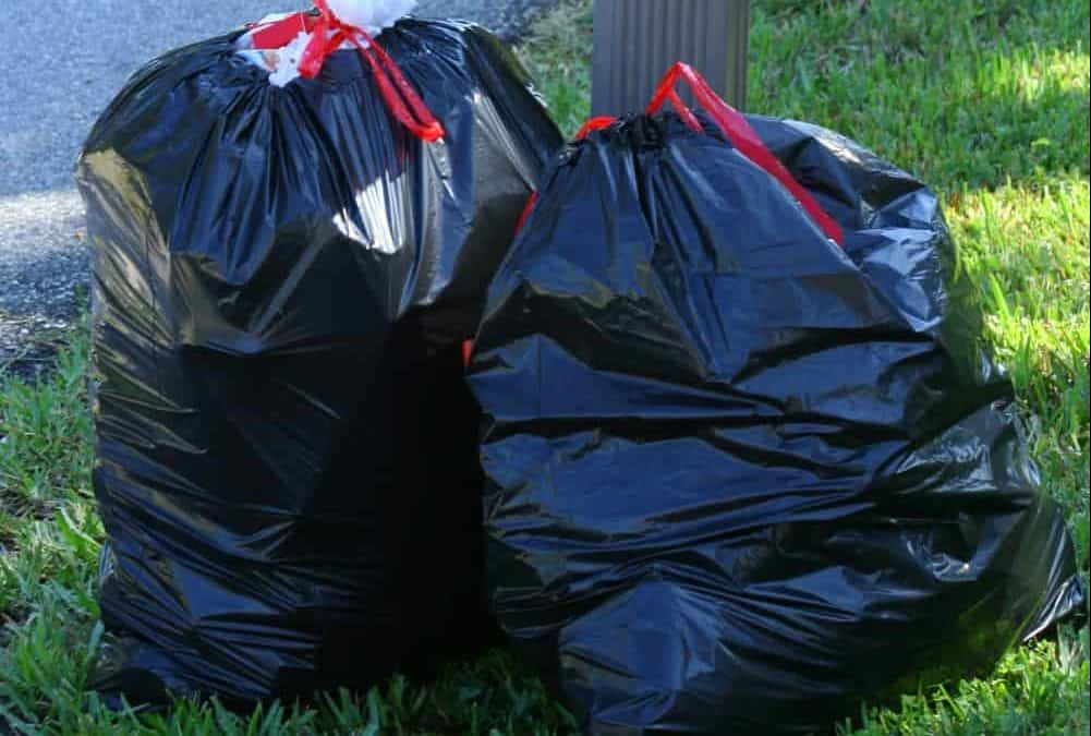 3 Eco Friendly Trash Bag Options – And My Top Pick!